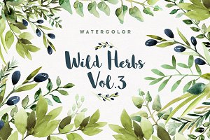 Watercolor Wild Herbs vol.3