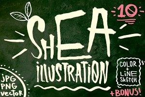 10 SHEA NUTS illustrations set