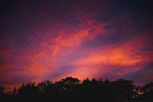 Vibrant Skies