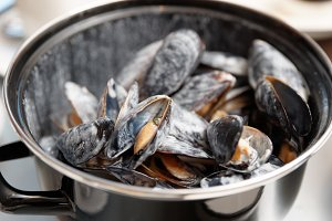 Mussels cooked with creamy sauce