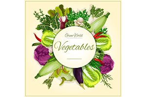 Vegetable, mushroom and salad leaf poster design