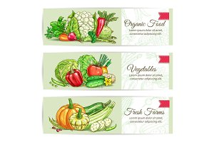 Organic vegetables sketch banner set design