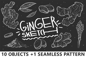 Ginger Sketch Set