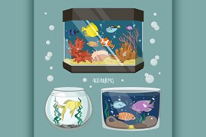 Glass Aquarium Set