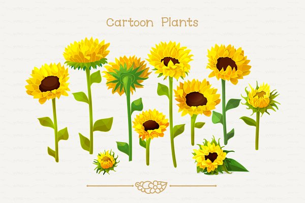 ♥ vector sunflowers Set