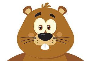 Cute Marmot Character