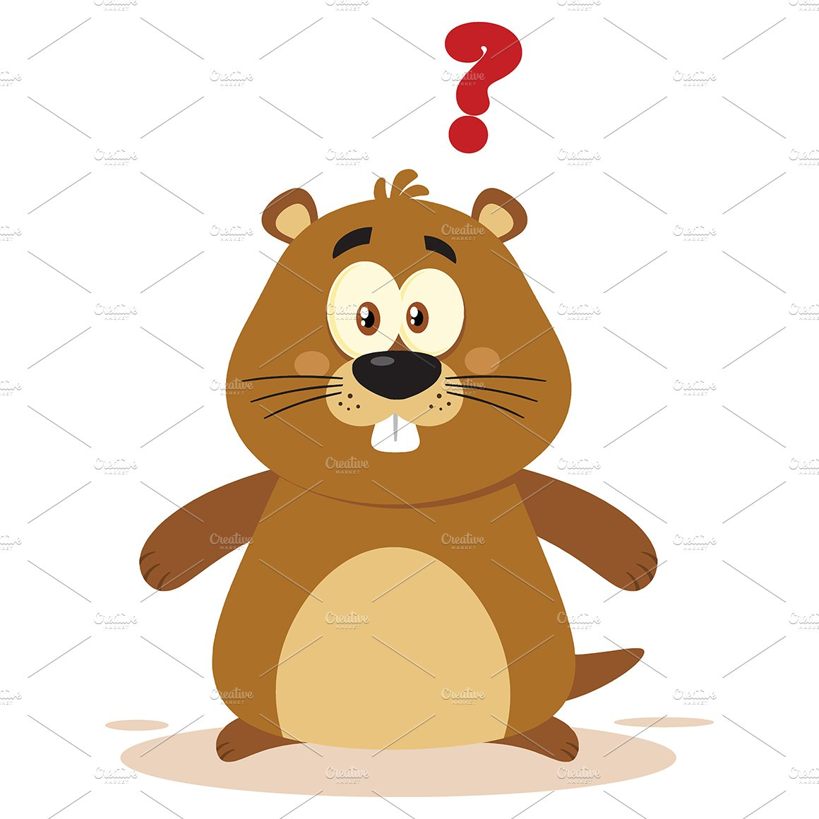 Cute Marmot With Question Mark ~ Illustrations ~ Creative ...