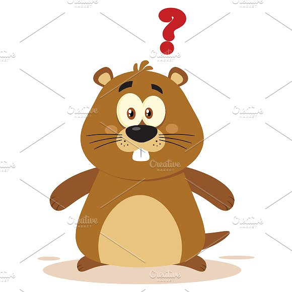 Character Design Questions : Cute marmot with question mark illustrations creative