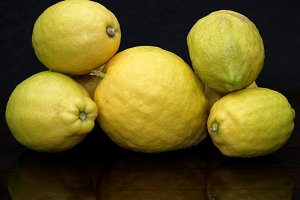 still life lemons on dark