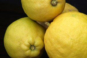 Still life lemons on dark