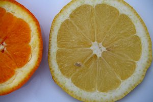 orange and lemon slices