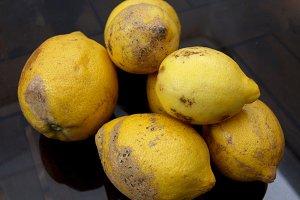 Still life ugly lemons