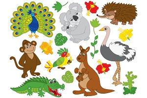 Vector Australian Animals Set