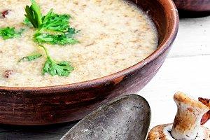 Mushroom creamy soup
