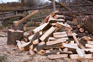 Pile of firewood with ax. Preparation for the winter in the village