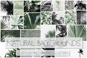 Natural Backgrounds II