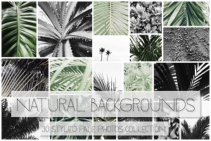 Natural Backgrounds III