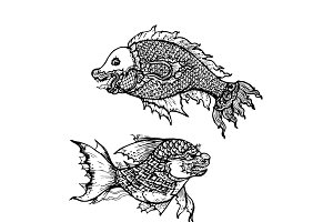 Drawing of  fish ,thai traditional