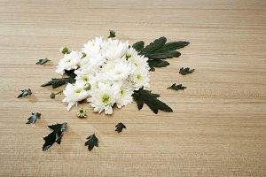 Bouquet of chrysanthemums