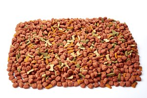 dry Cat dog food