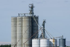 Concrete grain storage