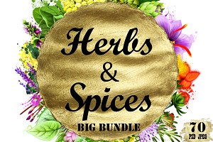 Herbs & Spices big bundle - 70pcs
