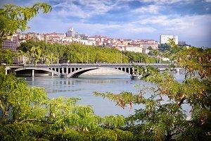 Wilson bridge between trees Lyon