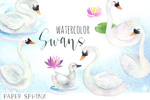 Watercolor Swans Pack
