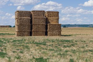 Stack of square hay bales