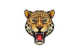 Jaguar head isolated cartoon mascot design