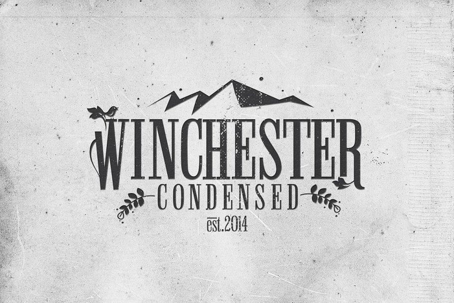 Winchester Condensed Font ~ Slab Serif Fonts ~ Creative Market