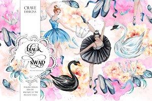 Black Swan Clip Art
