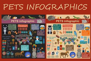 Pets and veterinary infographic