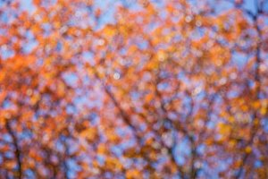 abstract background with beautiful boke