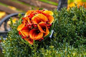 autumn, bridal bouquet, autumn bouquet, wedding, wedding in the