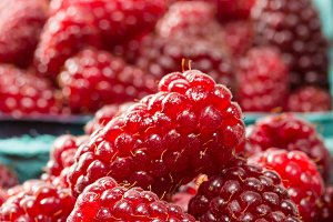 Closeup fresh tayberries