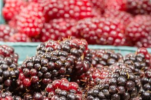 Marionberries at the market