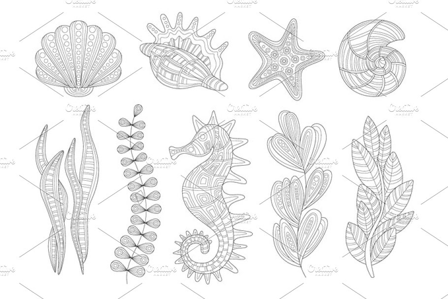 Underwater Nature Set Adult Zentangle Coloring Book Illustration
