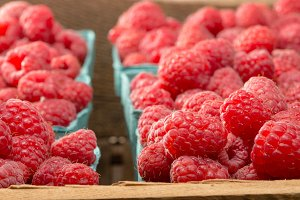 Fresh picked red raspberries