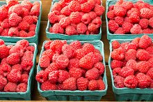 Boxes of red raspberries