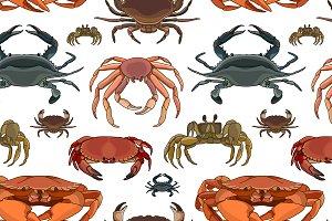 Crabs vector set pattern