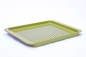 Empty Green Plastic Food Container