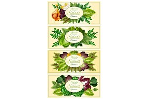 Fresh lettuce and green salad leaves banner set