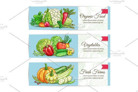Organic Vegetables Vegetarian Banners Set