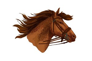 Horse in bridle, running mustang head vector