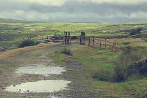 Dartmoor in the rain