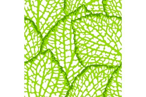 Seamless pattern with decorative leaves. Natural detailed illustration