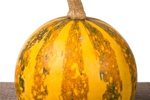 Small decorative orange pumpkin on a wooden board isolated  white background