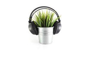 plant listening music