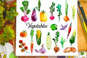 Watercolor Vegetables colored